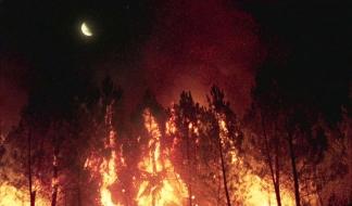 Lo que arde (6)