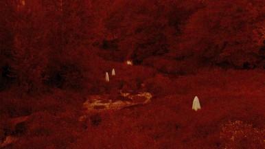 Lúa Vermella (5)
